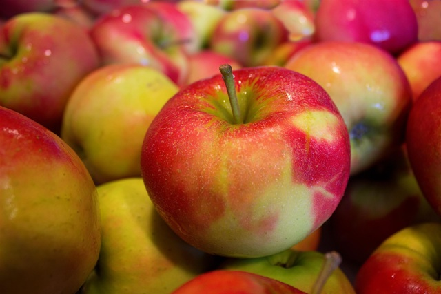 Apples Origins Consumption Nutrition Facts Health Benefits